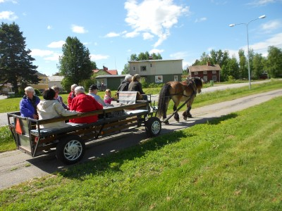 Två gånger fick nordsvensken Tor med Katarina Rosén på kuskbocken traska till Västerby med lyckliga passagerare på vagnen.