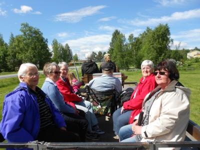Genom ett försommarfagert Rengsjö gick hästekipaget med idel glada passagerare denna måndagförmiddag.